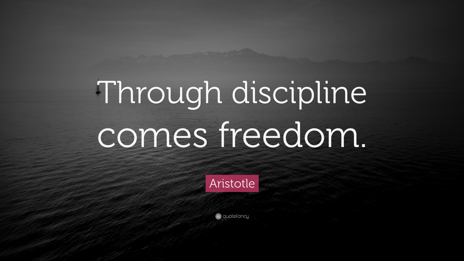 Life Success Quotes Hd Wallpapers Aristotle Quote Through Discipline Comes Freedom 33