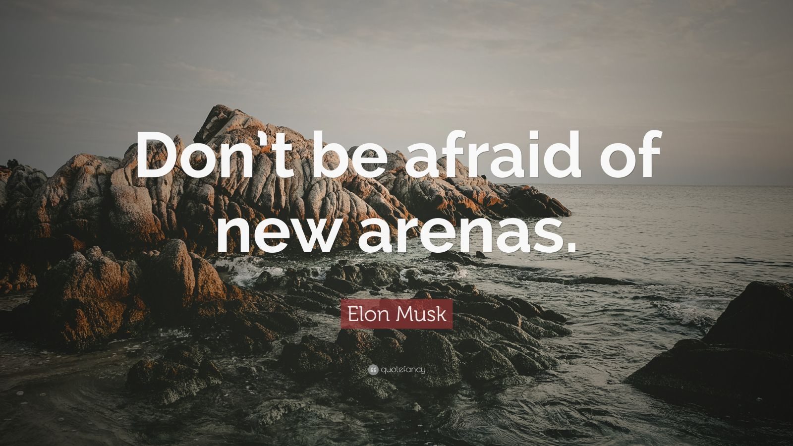 Gary Vaynerchuk Quotes Wallpaper Elon Musk Quote Don T Be Afraid Of New Arenas 39
