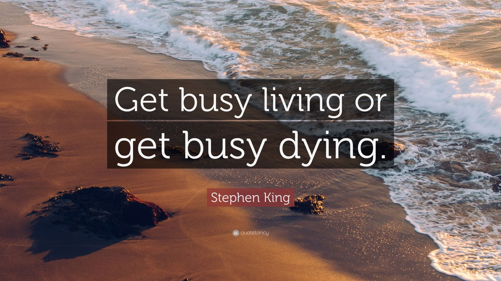 Mother Teresa Quotes Wallpapers Stephen King Quote Get Busy Living Or Get Busy Dying