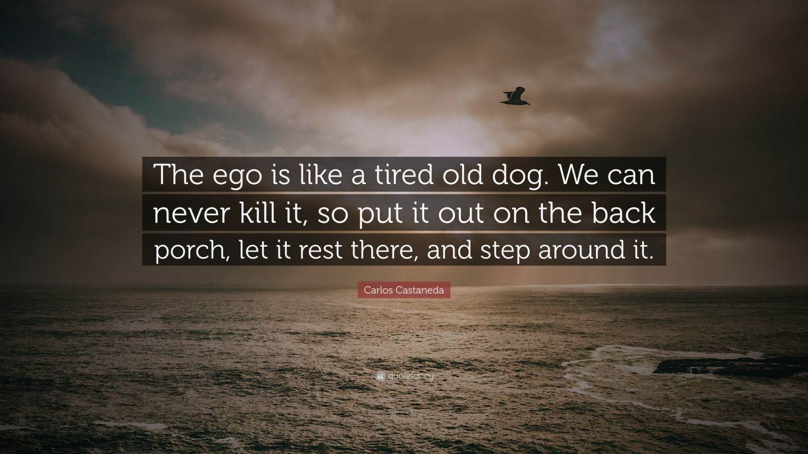 Holographic Wallpaper With Quotes Carlos Castaneda Quote The Ego Is Like A Tired Old Dog
