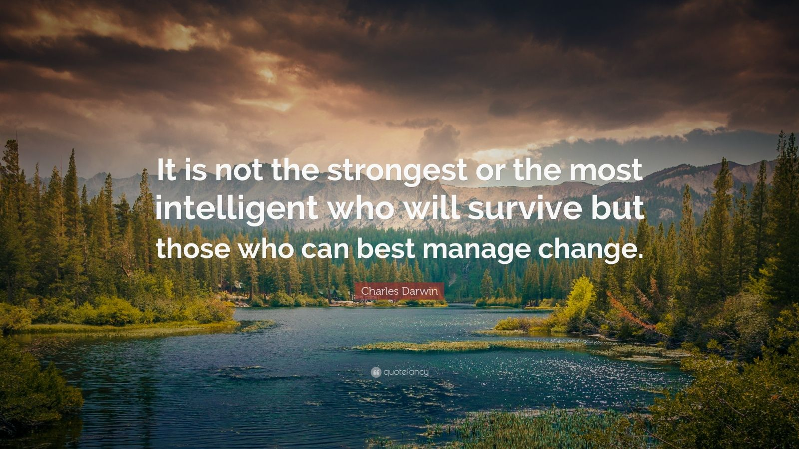 Obama Wallpaper Quote Charles Darwin Quote It Is Not The Strongest Or The Most