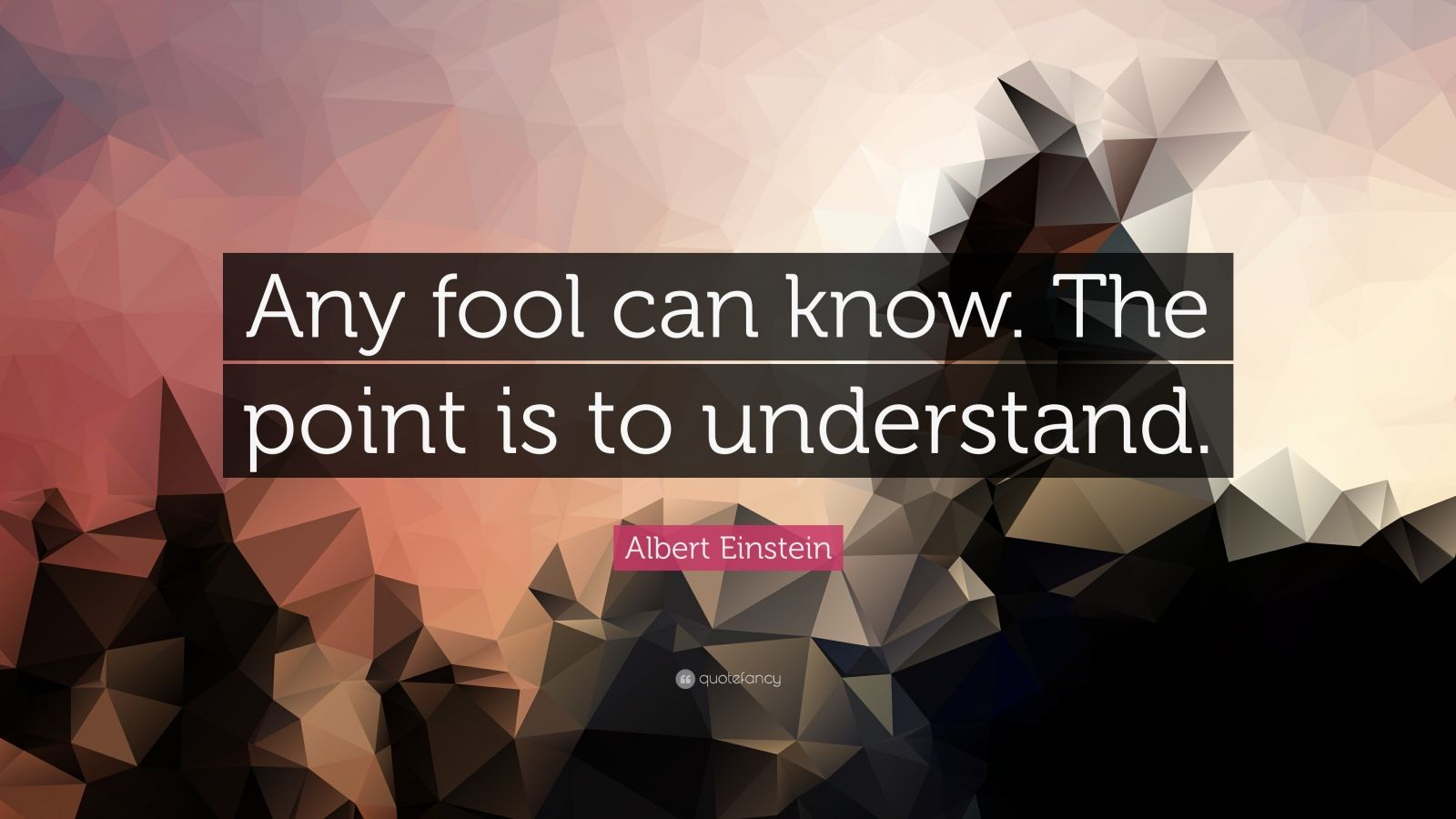 Business Success Quotes Wallpaper Albert Einstein Quote Any Fool Can Know The Point Is To