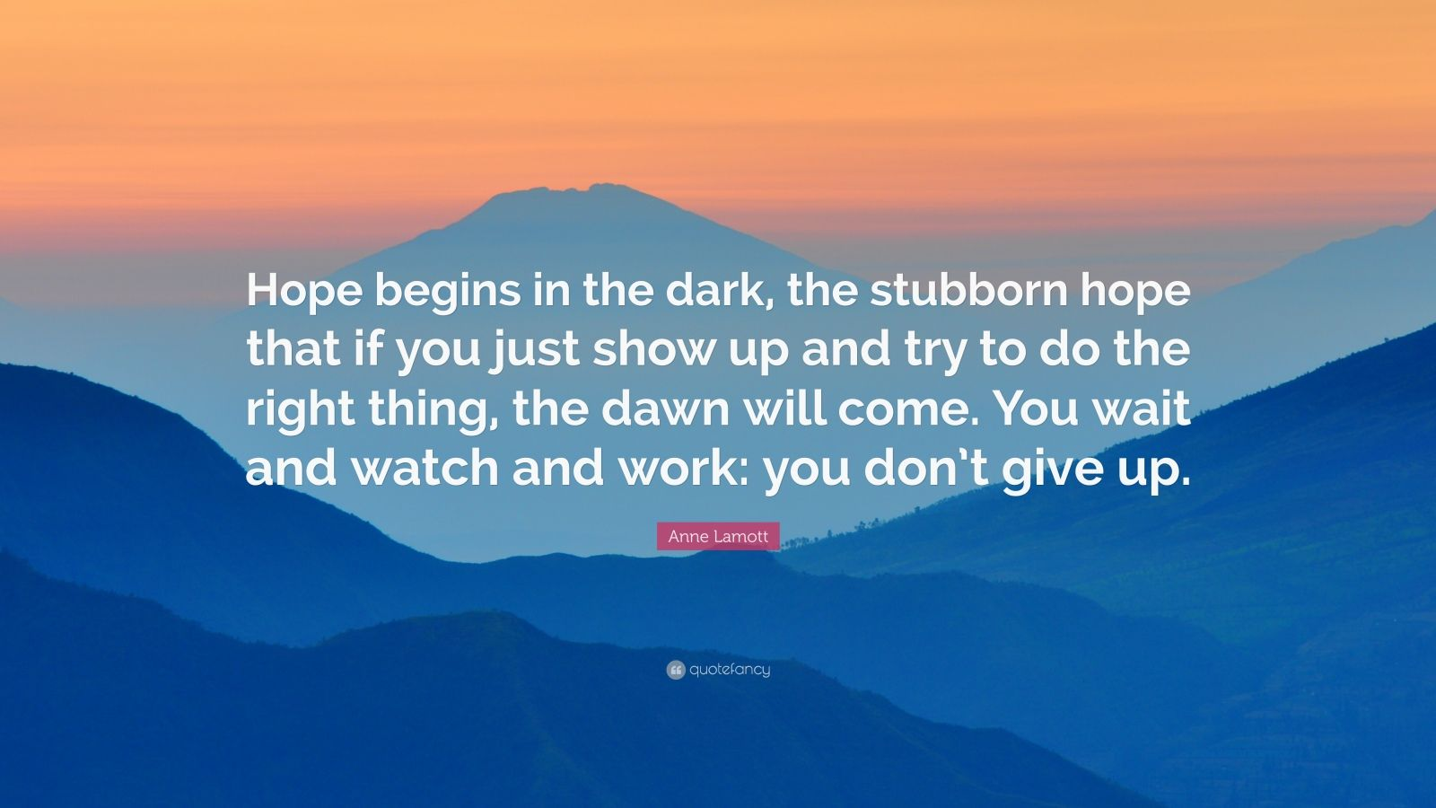 Life Success Quotes Hd Wallpapers Anne Lamott Quote Hope Begins In The Dark The Stubborn