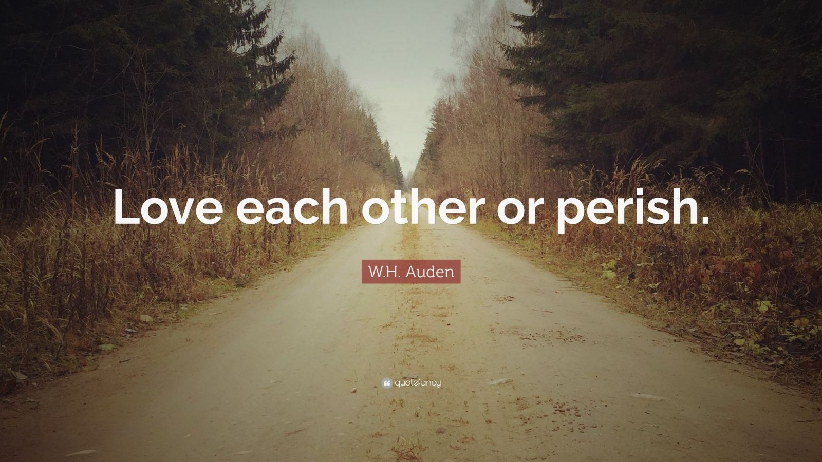 Motivational Quotes To Study Wallpaper W H Auden Quote Love Each Other Or Perish 12