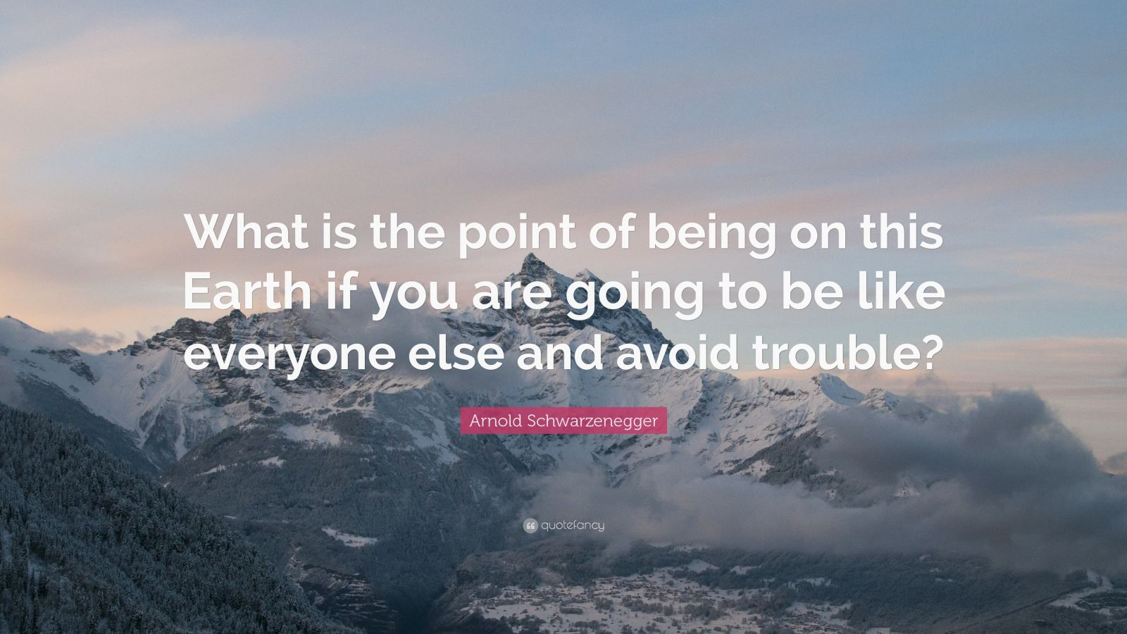 Arnold Schwarzenegger Quote What is the point of being