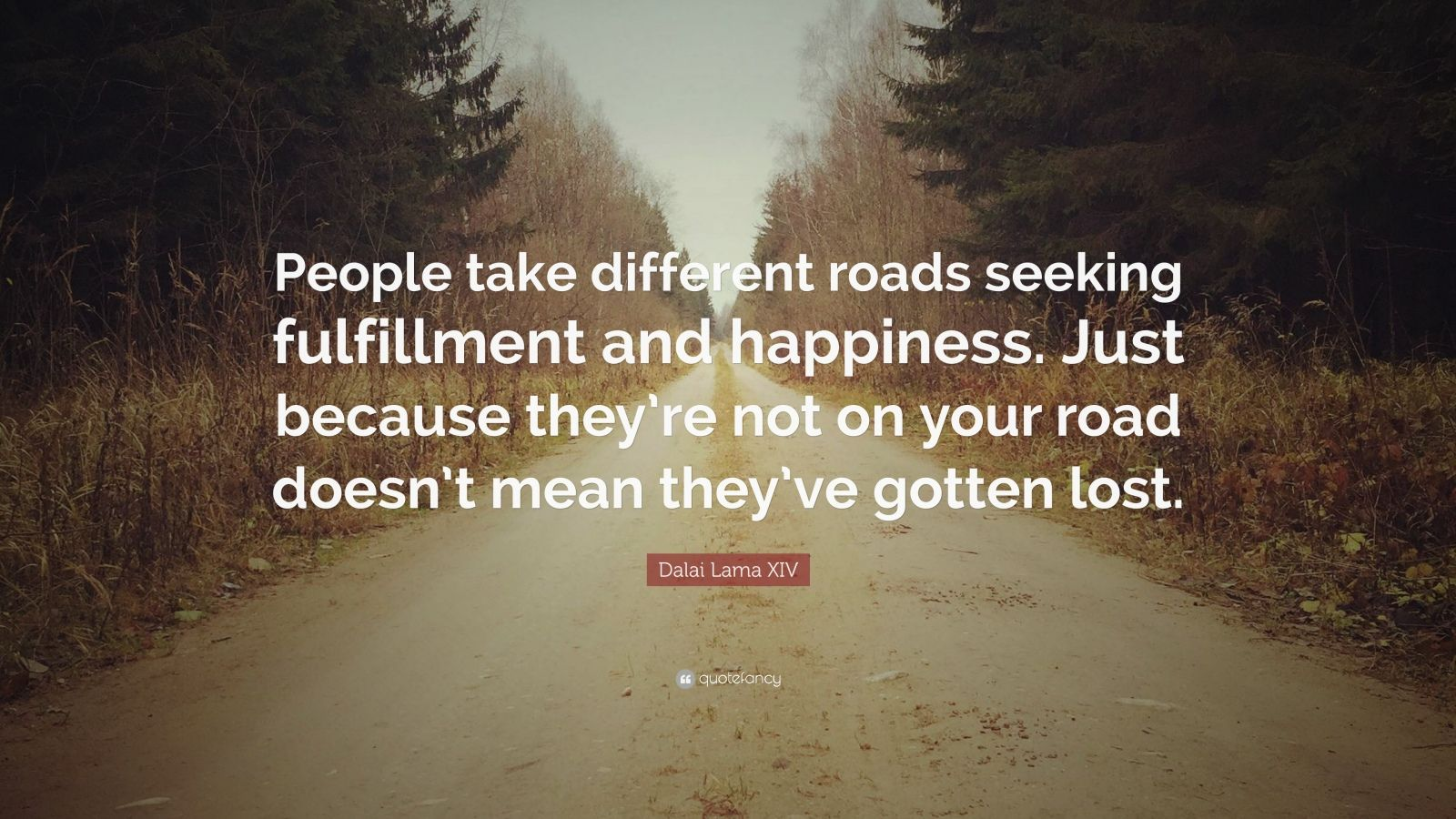 Lost Love Wallpapers Quotes Dalai Lama Xiv Quote People Take Different Roads Seeking