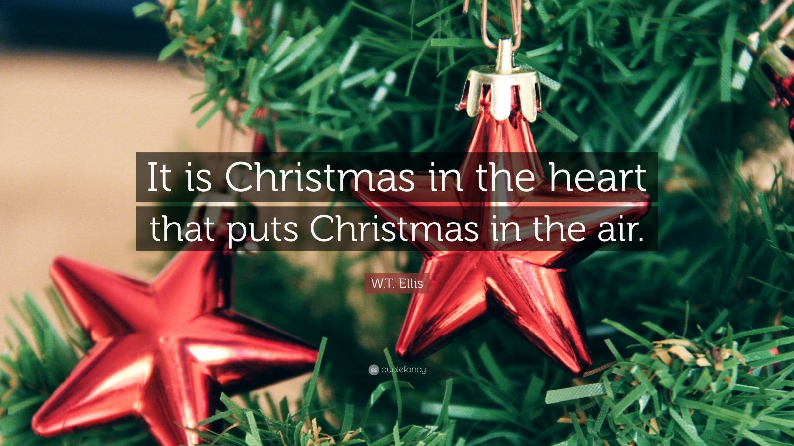 Tree Quote Wallpaper Mac Christmas Quotes 30 Wallpapers Quotefancy