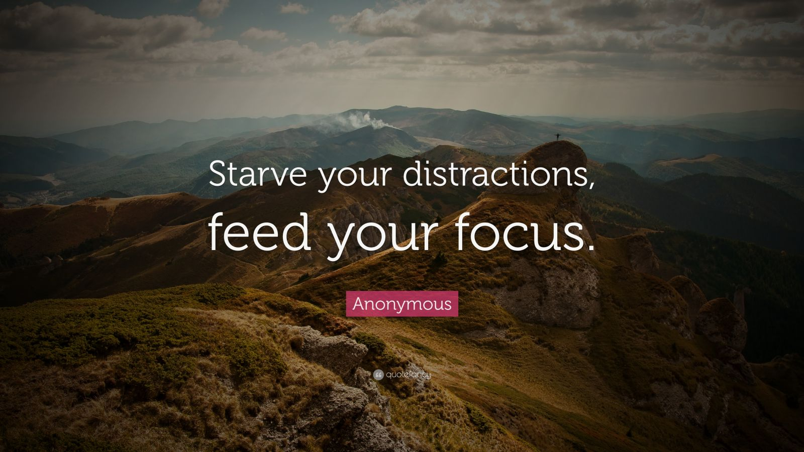 Business Success Quotes Wallpaper Anonymous Quote Starve Your Distractions Feed Your