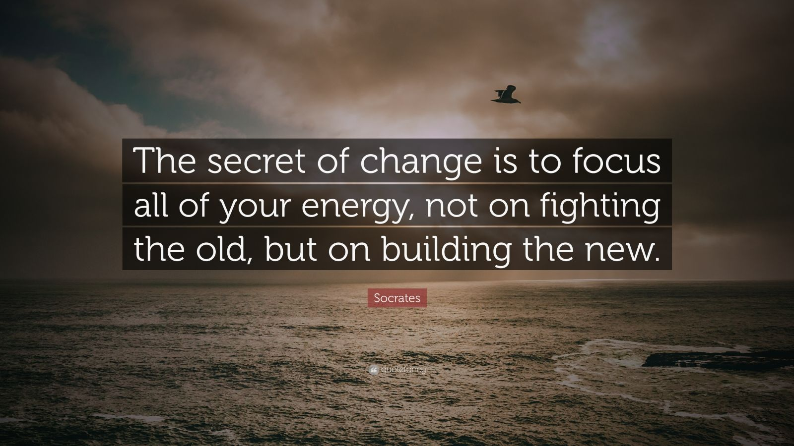 William Shakespeare Love Quotes Wallpaper Socrates Quote The Secret Of Change Is To Focus All Of