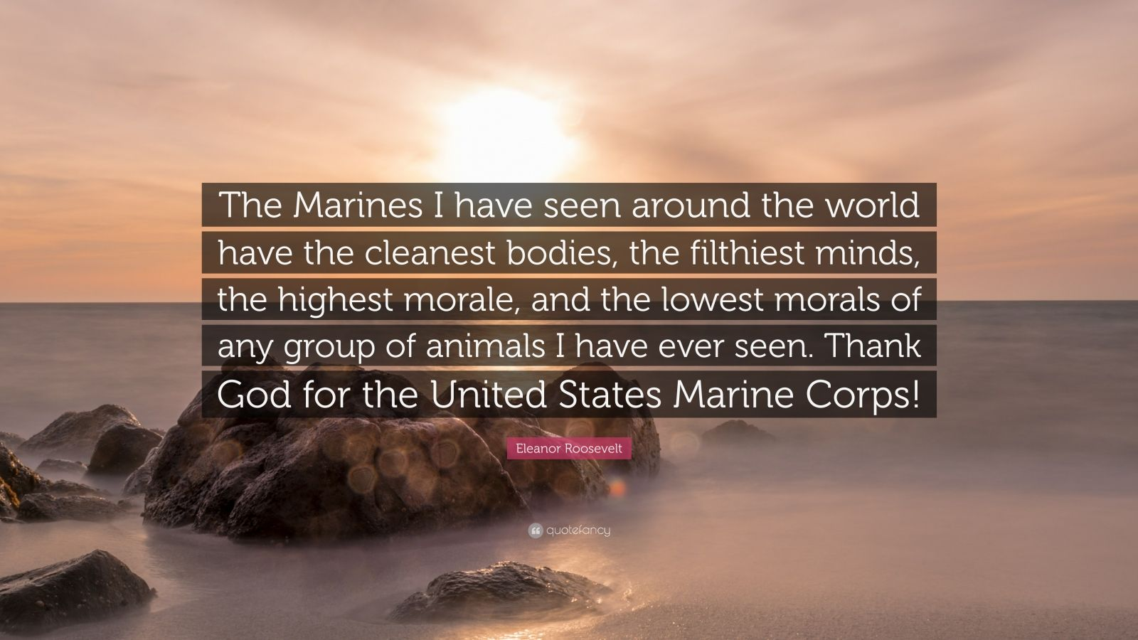 Eleanor Roosevelt Quotes Marines | Eleanor Roosevelt Marine Quote