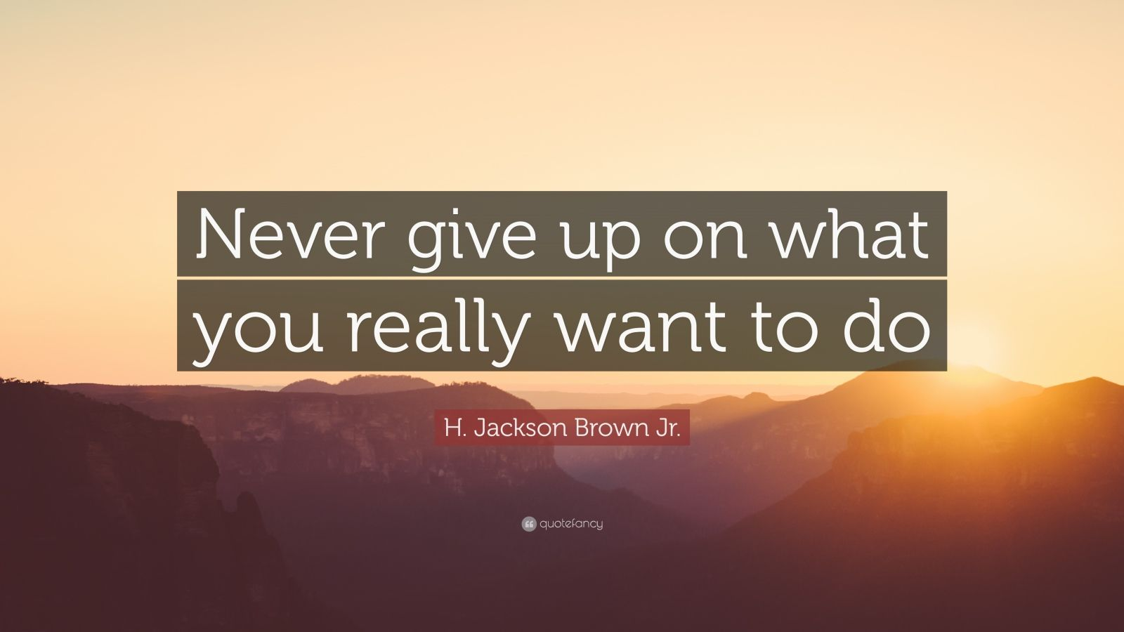 Business Success Quotes Wallpaper H Jackson Brown Jr Quote Never Give Up On What You