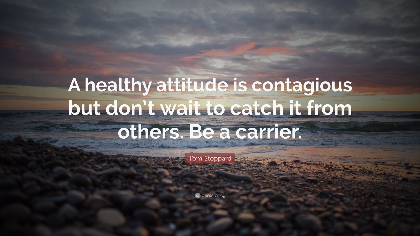 Albert Einstein Wallpaper Quotes Tom Stoppard Quote A Healthy Attitude Is Contagious But