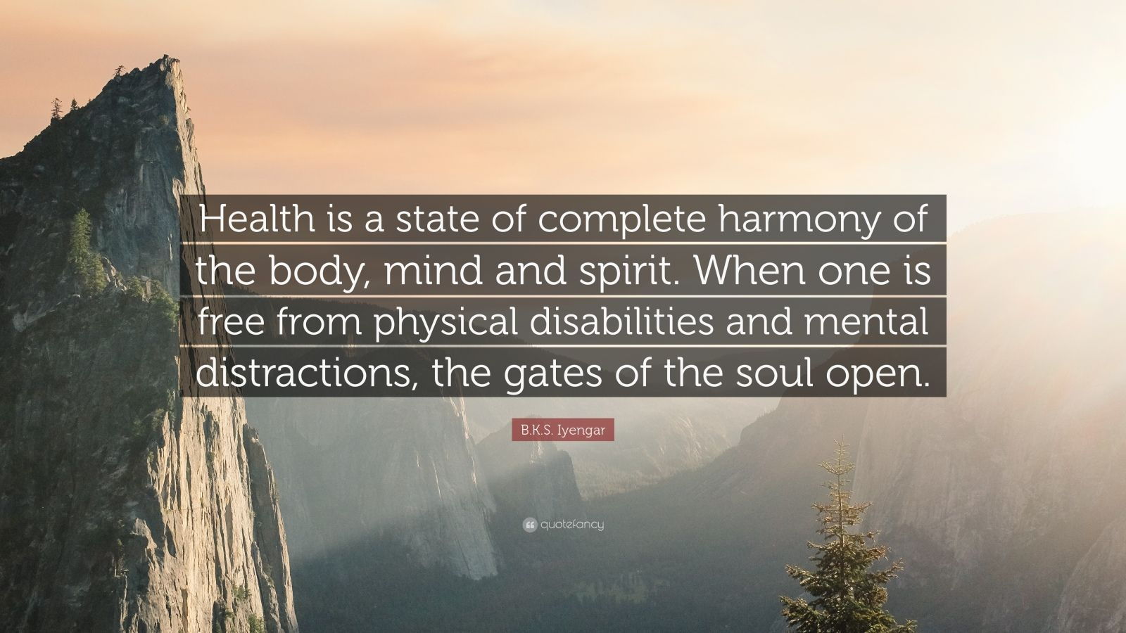 Spirit Science Quotes Wallpapers B K S Iyengar Quote Health Is A State Of Complete