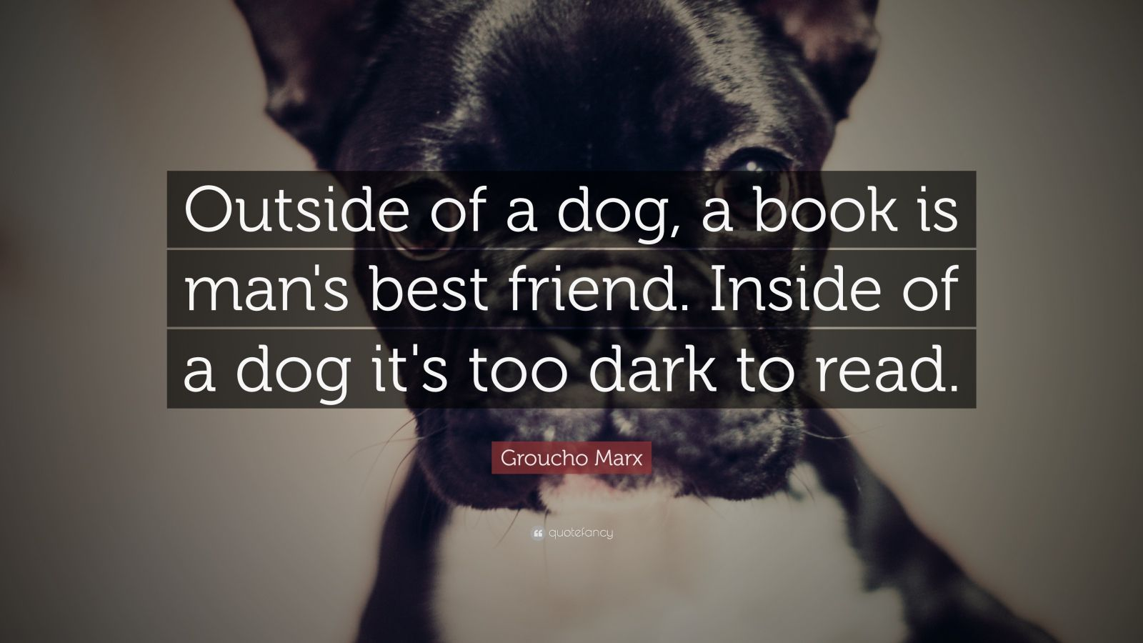 Turning 30 Quotes Wallpapers Groucho Marx Quote Outside Of A Dog A Book Is Man S