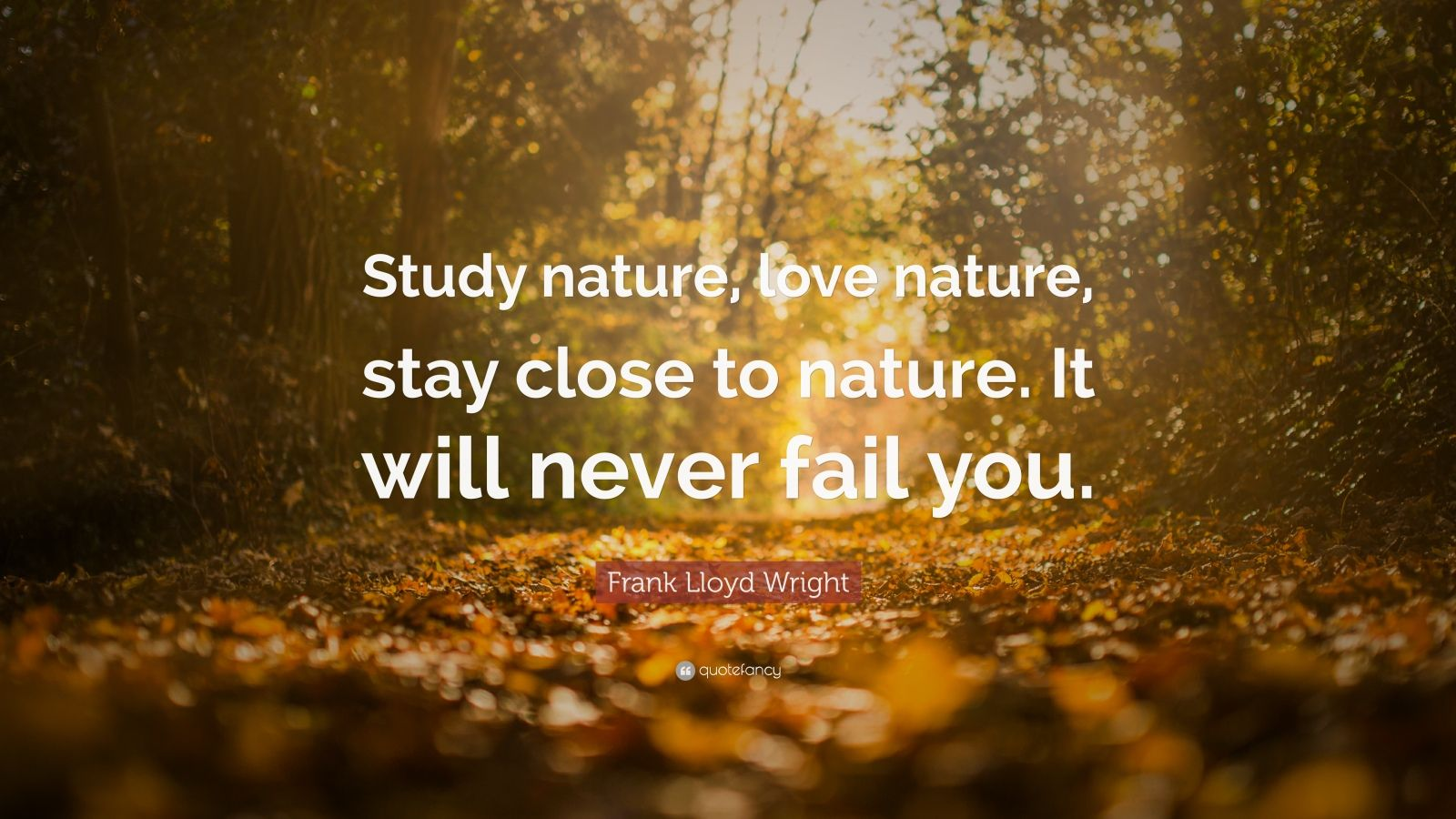 Fall Of Quotations Wallpapers Nature Quotes 32 Wallpapers Quotefancy