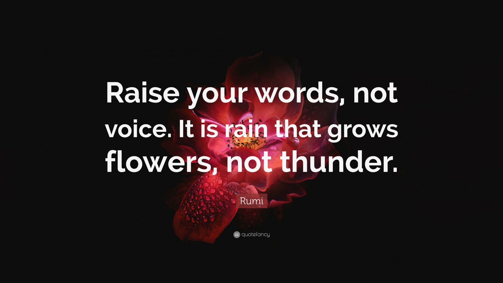 Theodore Roosevelt Quotes Wallpaper Rumi Quote Raise Your Words Not Voice It Is Rain That