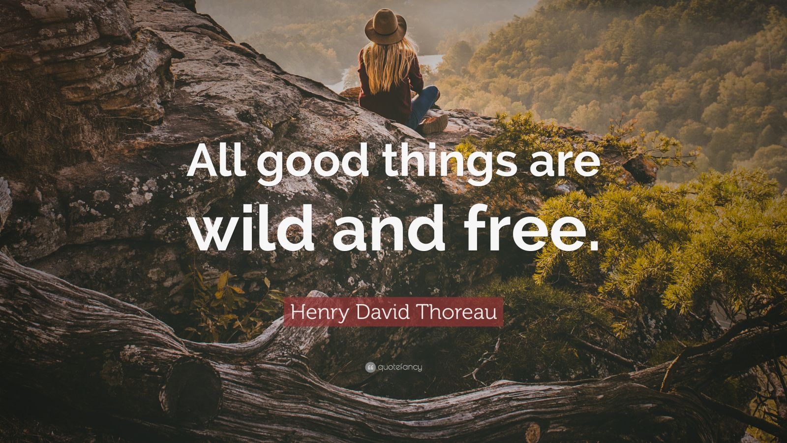 Henry David Thoreau Wallpaper Quote Henry David Thoreau Quote All Good Things Are Wild And