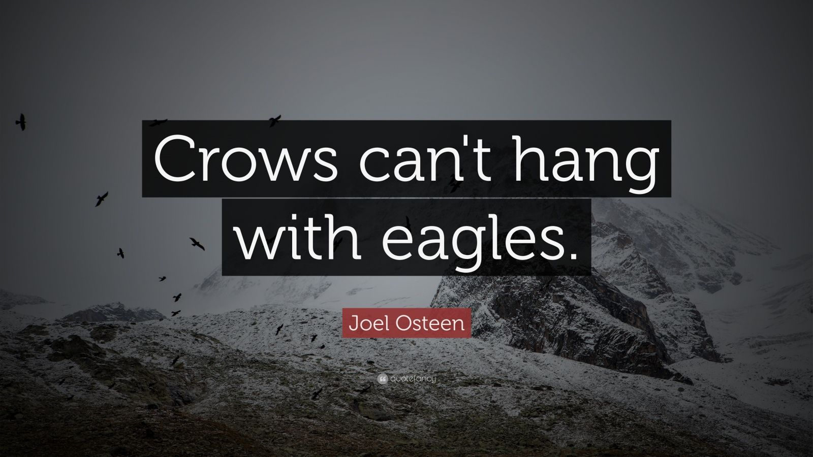 Success Quotes Hd Wallpapers Joel Osteen Quote Crows Can T Hang With Eagles 11