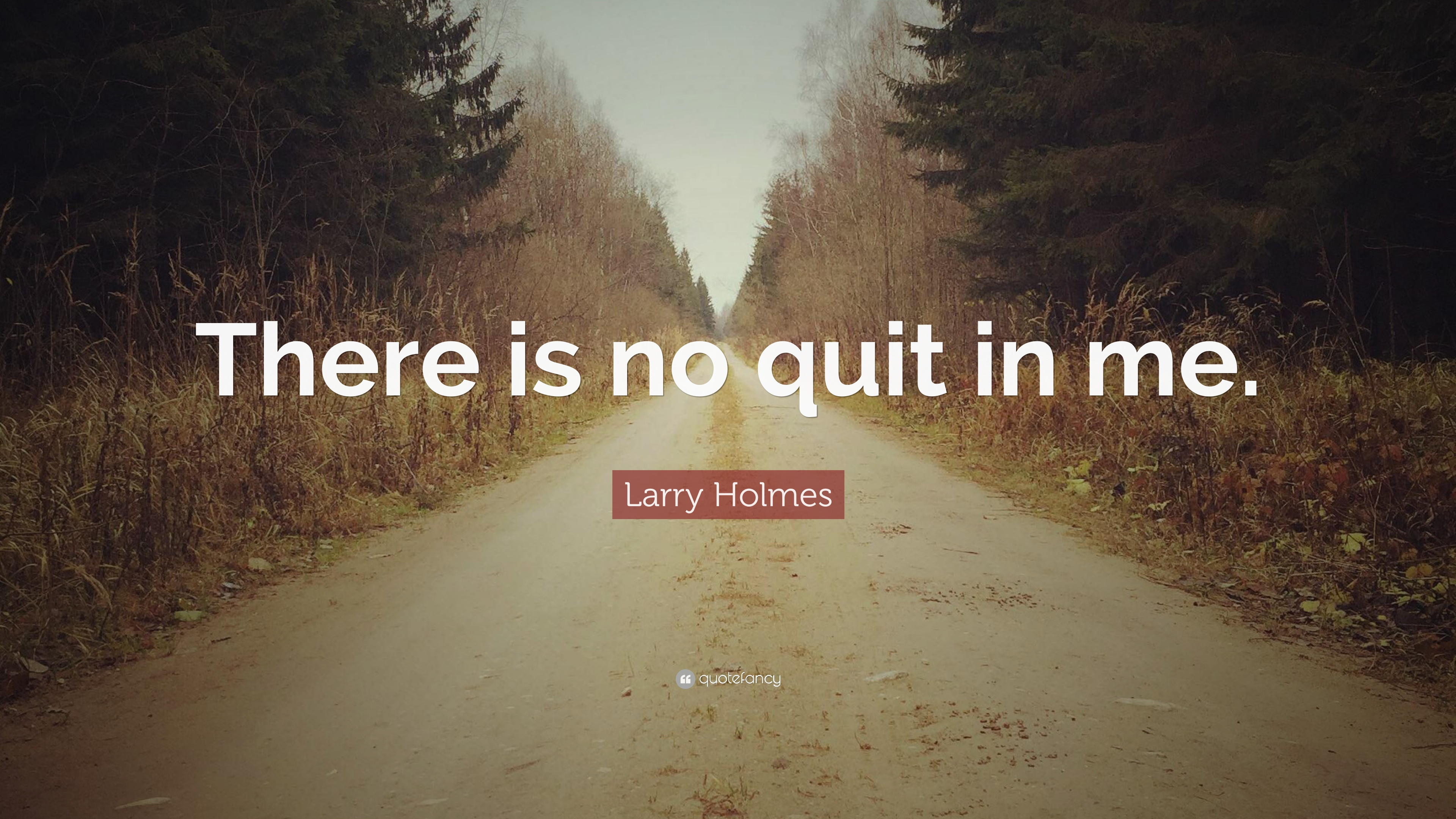 I Quit Quotes Wallpaper Quitting Quotes 40 Wallpapers Quotefancy