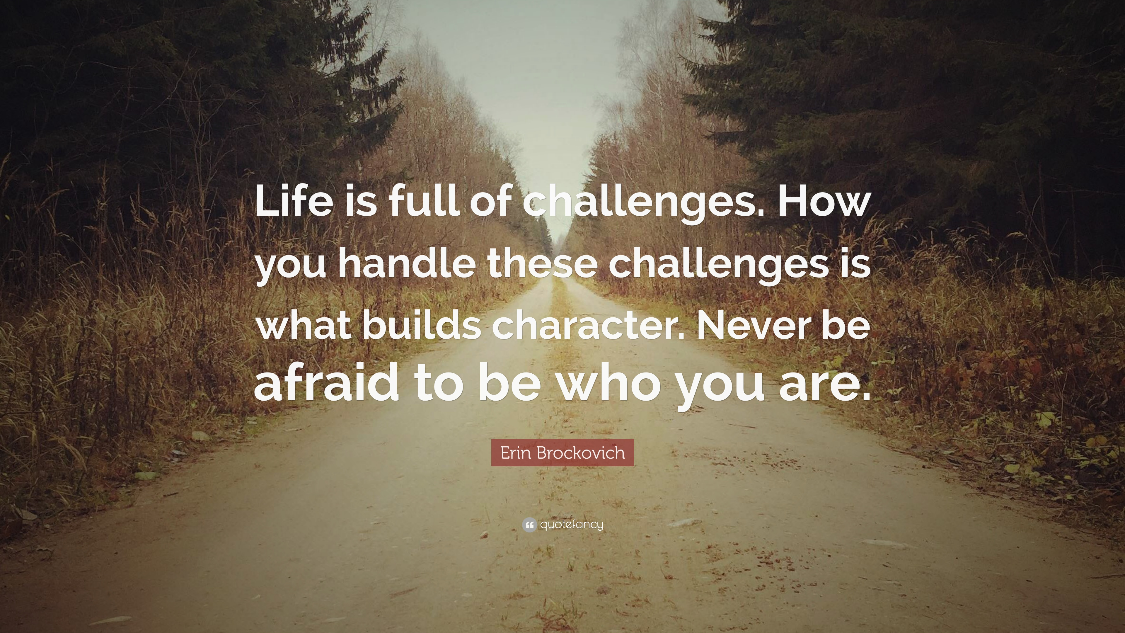 Inspirational Quotes On Life Challenges Wallpapers Erin Brockovich Quote Life Is Full Of Challenges How
