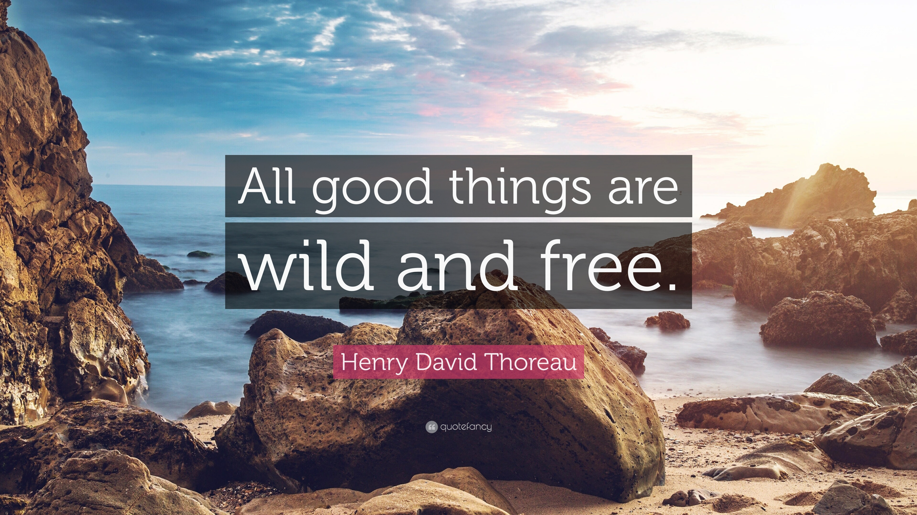 Friendship Quote Wallpapers Free Henry David Thoreau Quote All Good Things Are Wild And