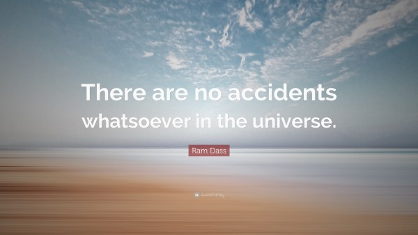 There Are No Accidents Quote Oogway Vtwctr