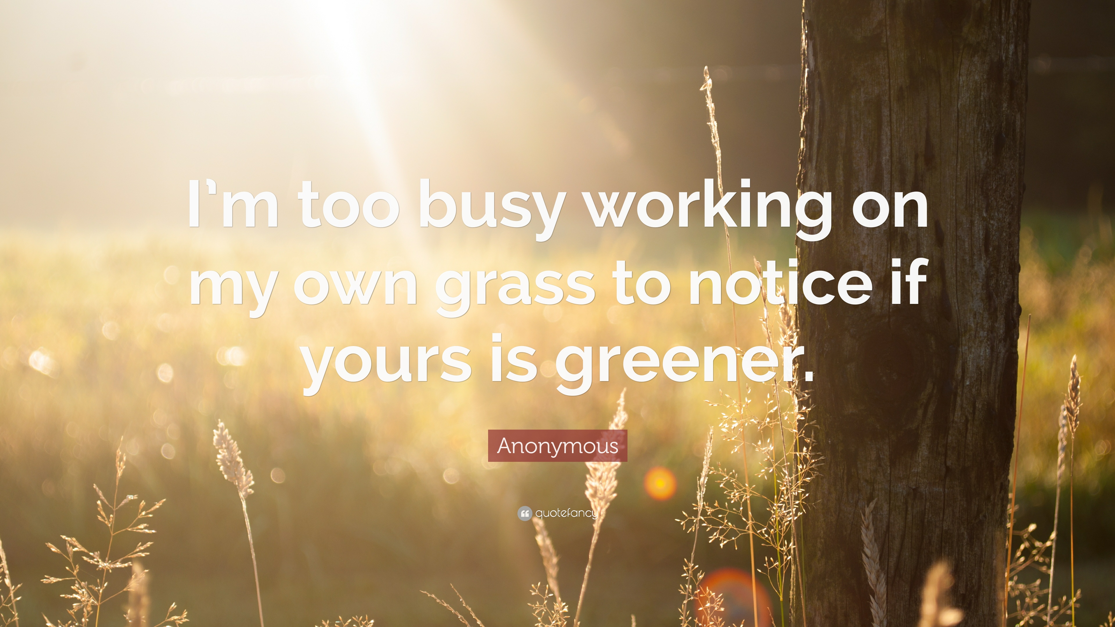 Busy Wallpaper With Quotes Anonymous Quote I M Too Busy Working On My Own Grass To