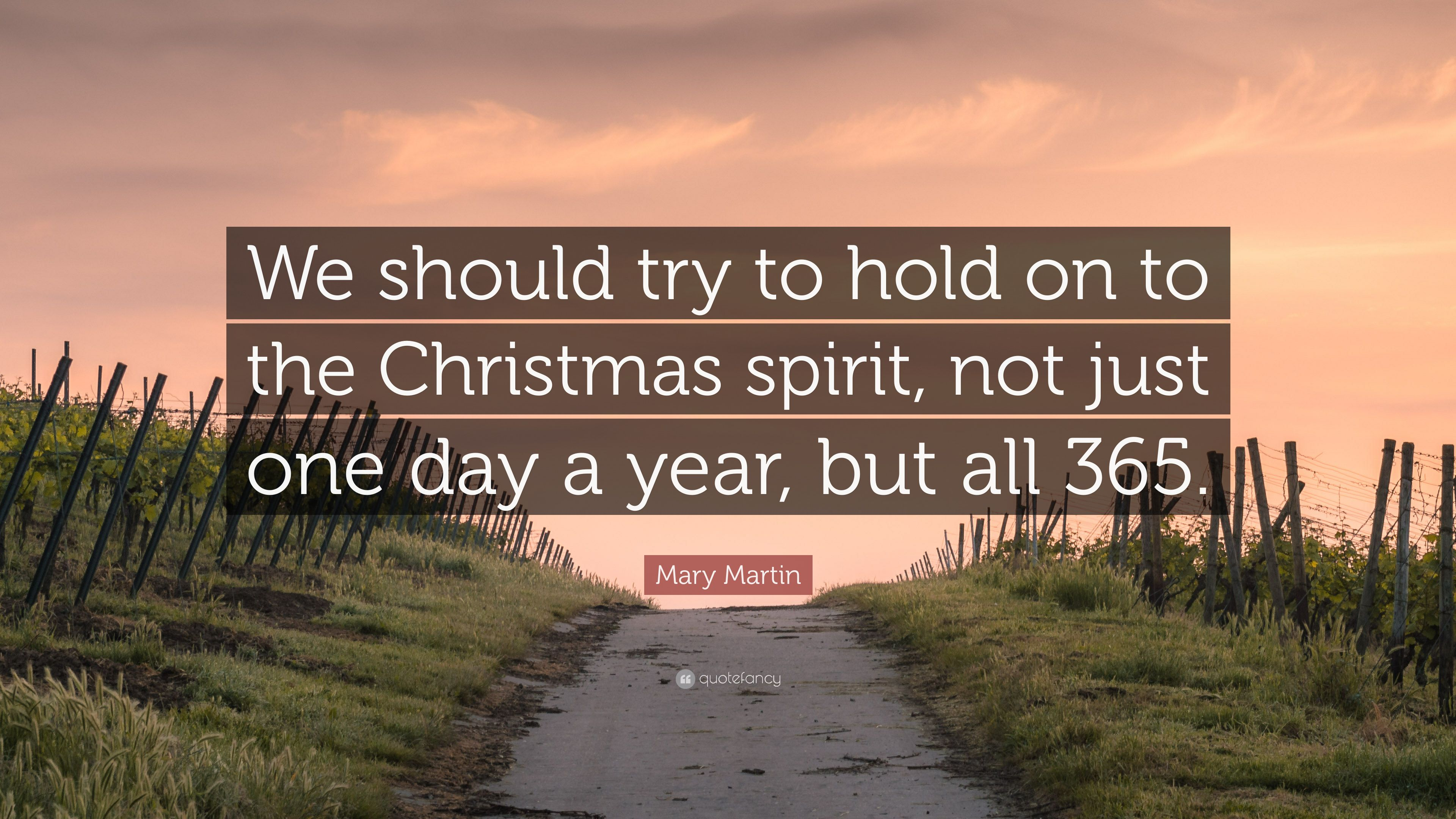 Spirit Science Quotes Wallpapers Mary Martin Quote We Should Try To Hold On To The