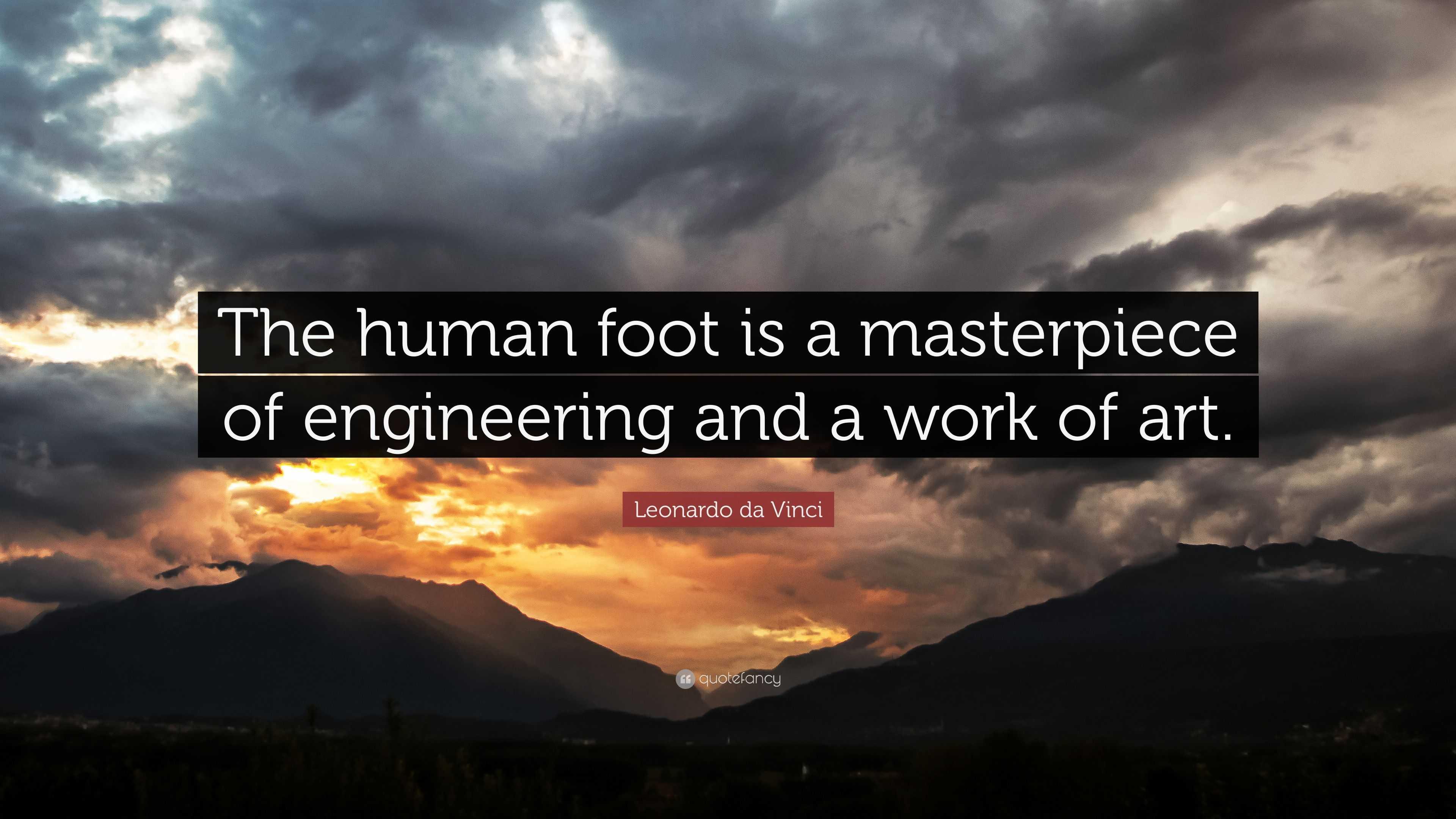 Aristotle Quotes Wallpaper Leonardo Da Vinci Quote The Human Foot Is A Masterpiece