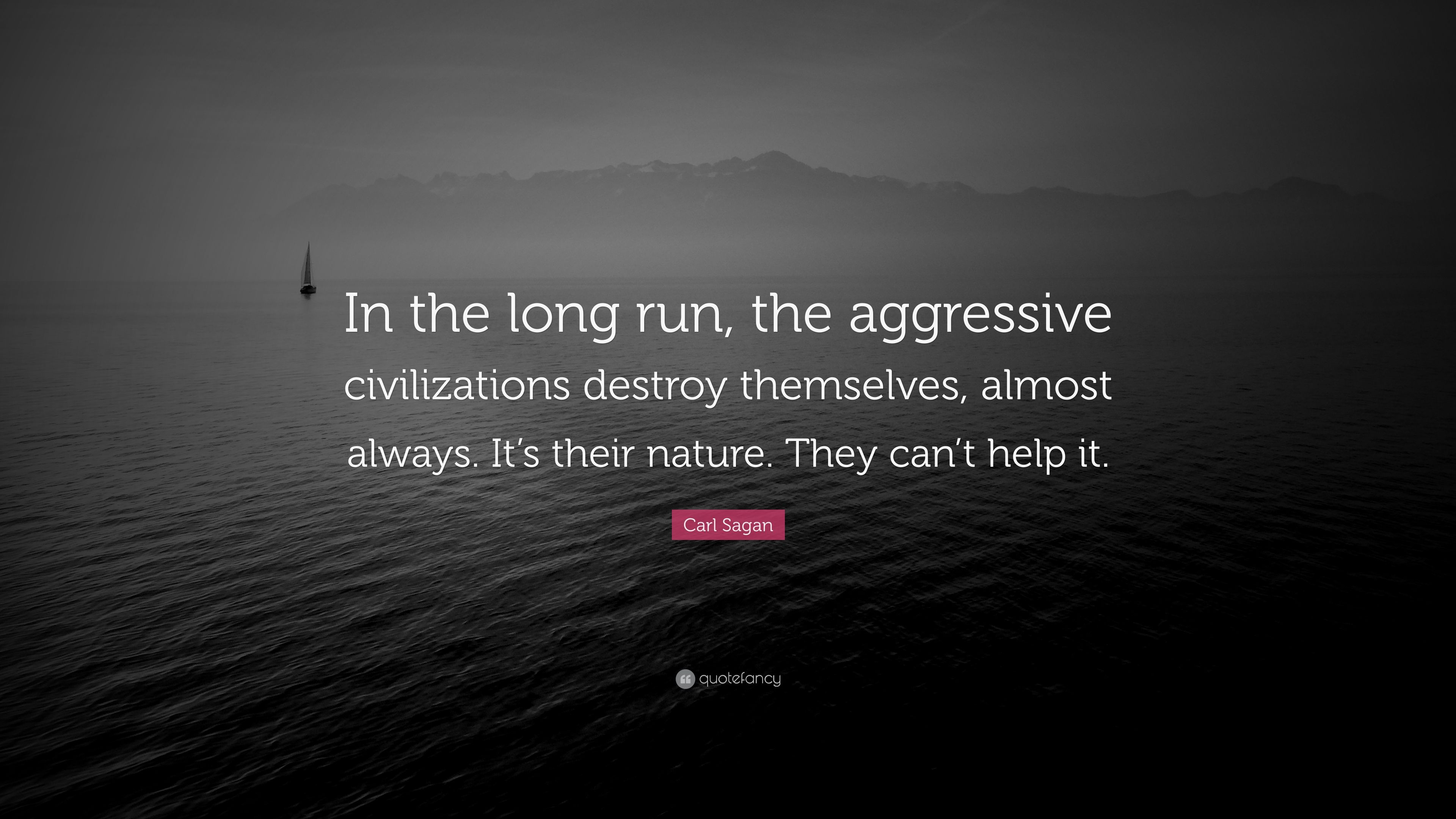 Aggressive Quotes Wallpapers Carl Sagan Quote In The Long Run The Aggressive