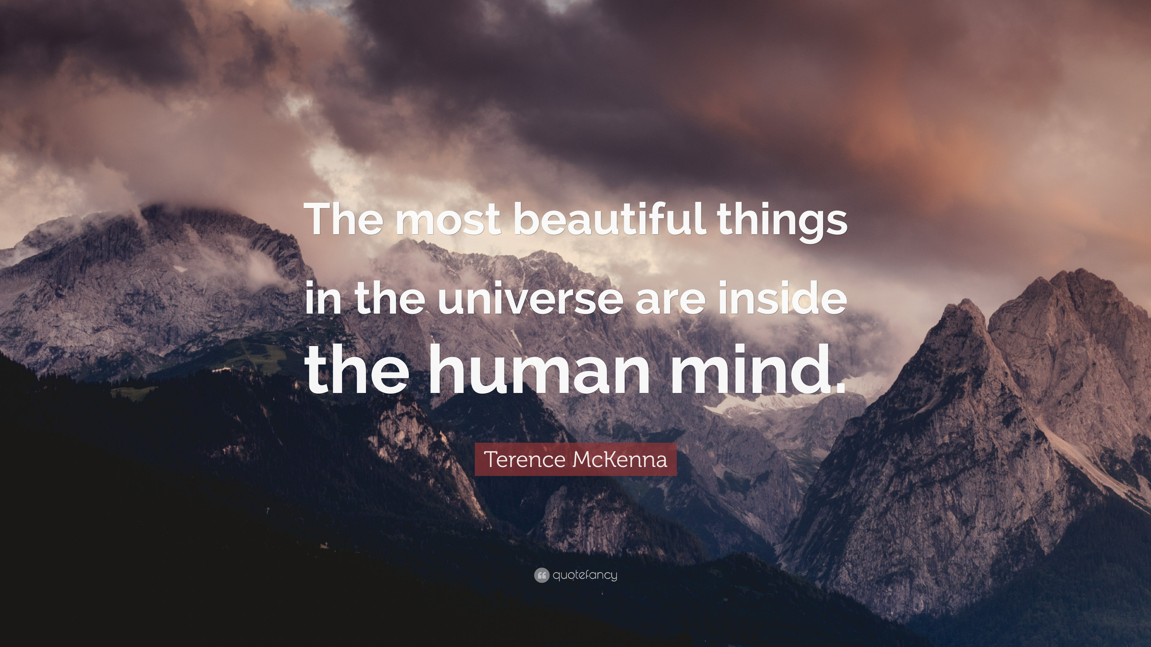 Terrence Mckenna Wallpaper Quotes Terence Mckenna Quote The Most Beautiful Things In The