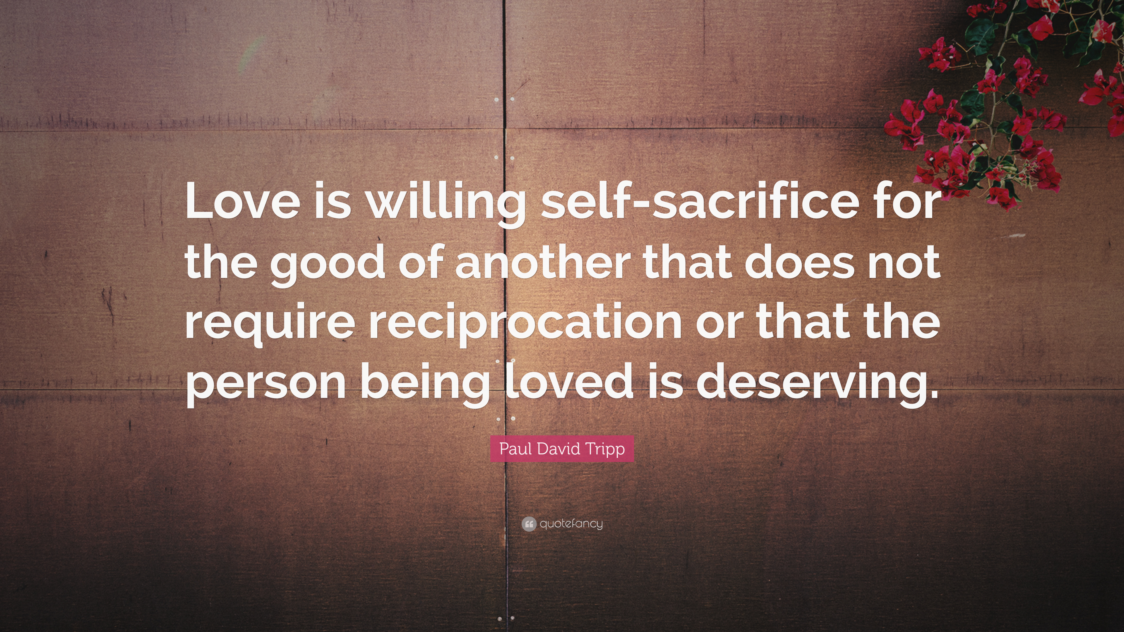 Steve Jobs Motivational Quotes Wallpaper Paul David Tripp Quote Love Is Willing Self Sacrifice