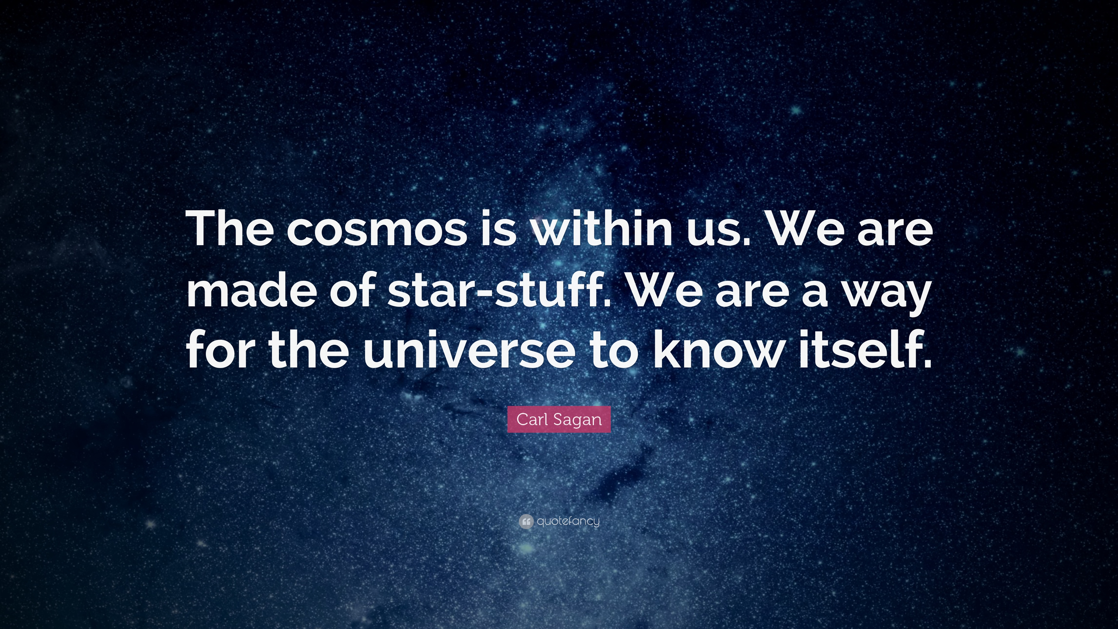 Studying Quotes Wallpaper Carl Sagan Quote The Cosmos Is Within Us We Are Made Of