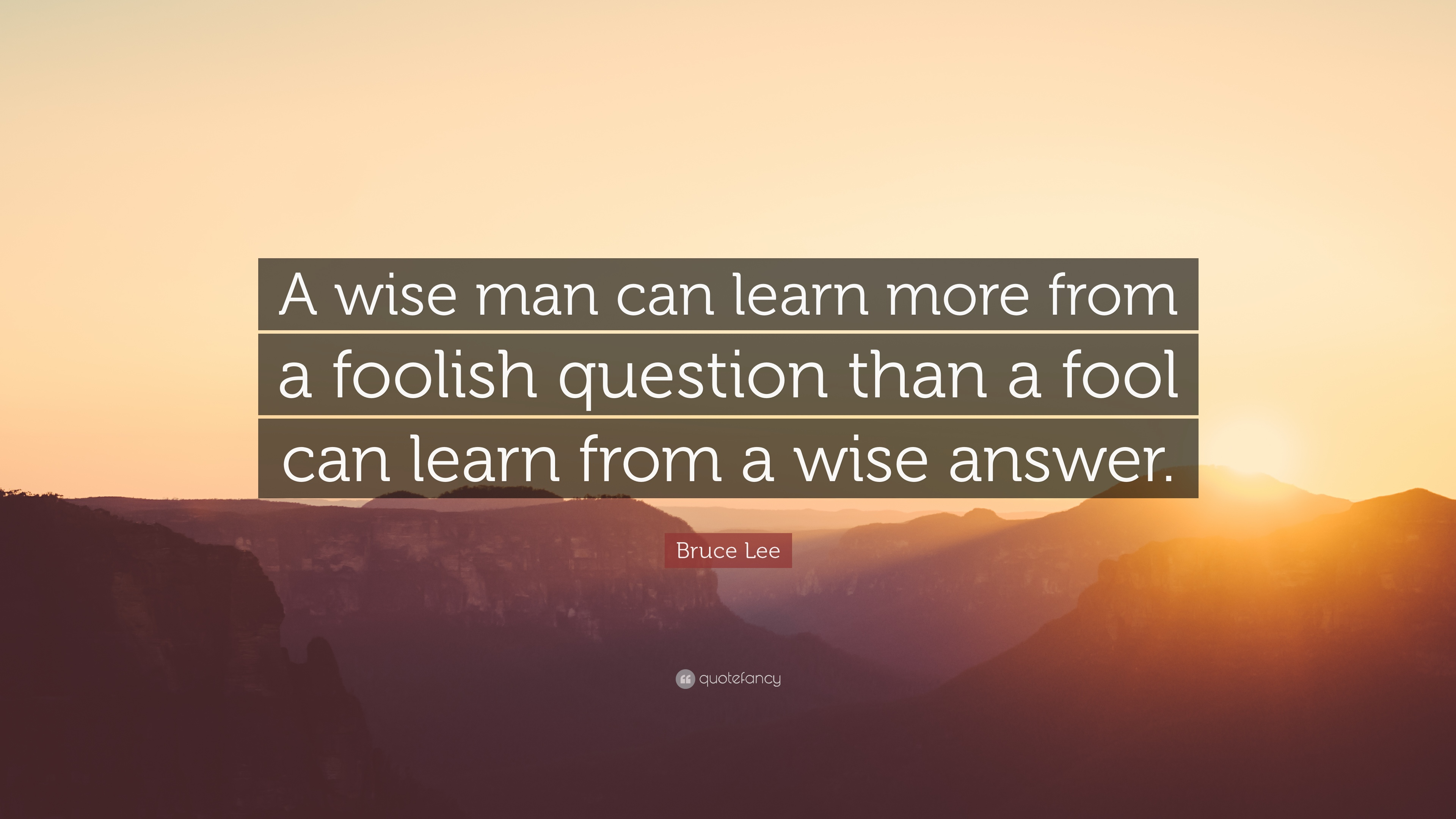 Wise Man Can Learn More Foolish Question Fool Can Learn Wise Answ