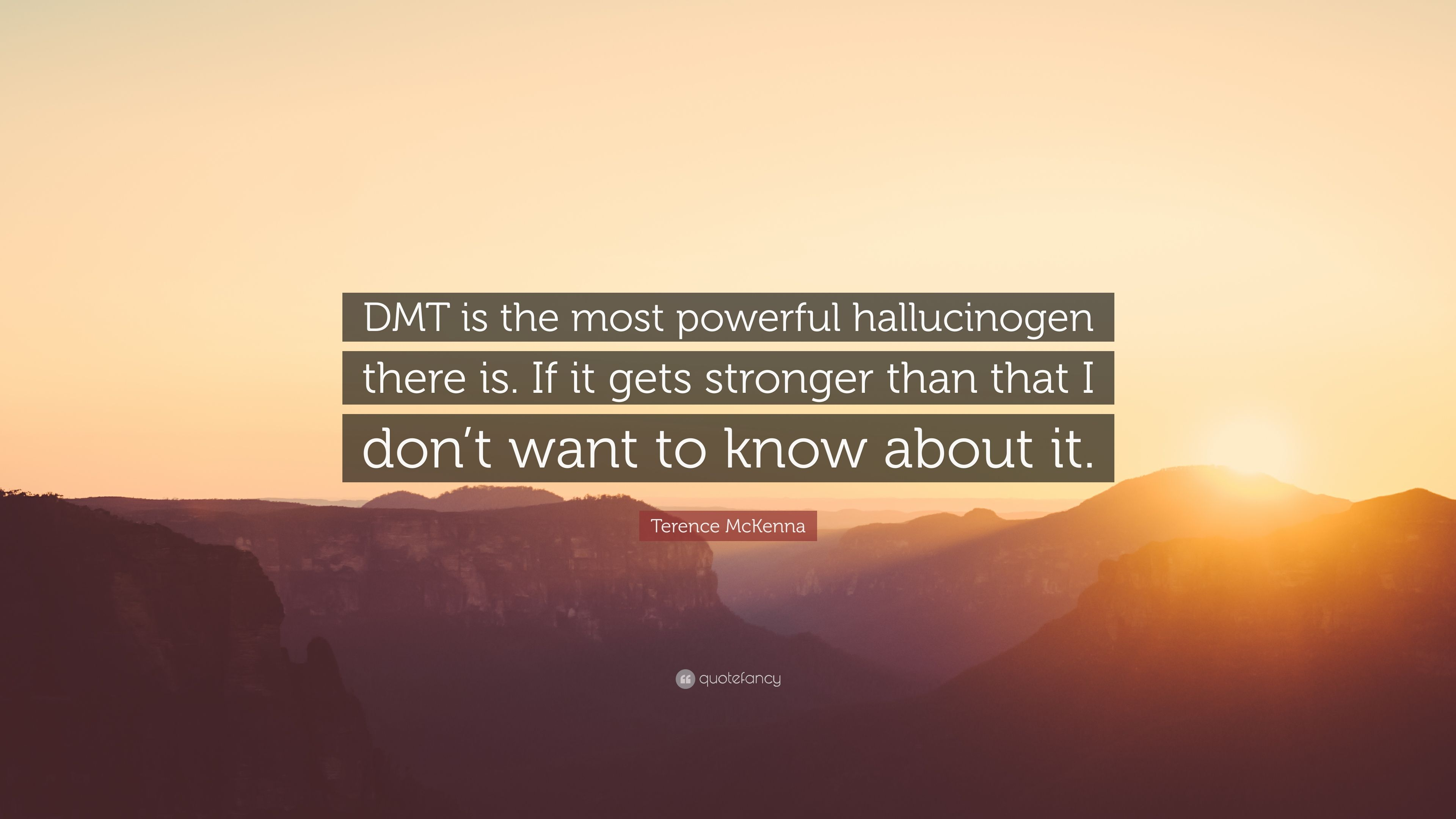 Terrence Mckenna Wallpaper Quotes Terence Mckenna Quote Dmt Is The Most Powerful