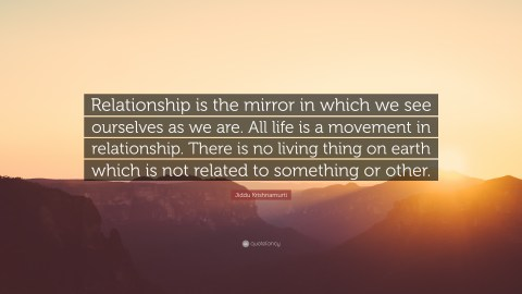Image result for we are all mirrors quote