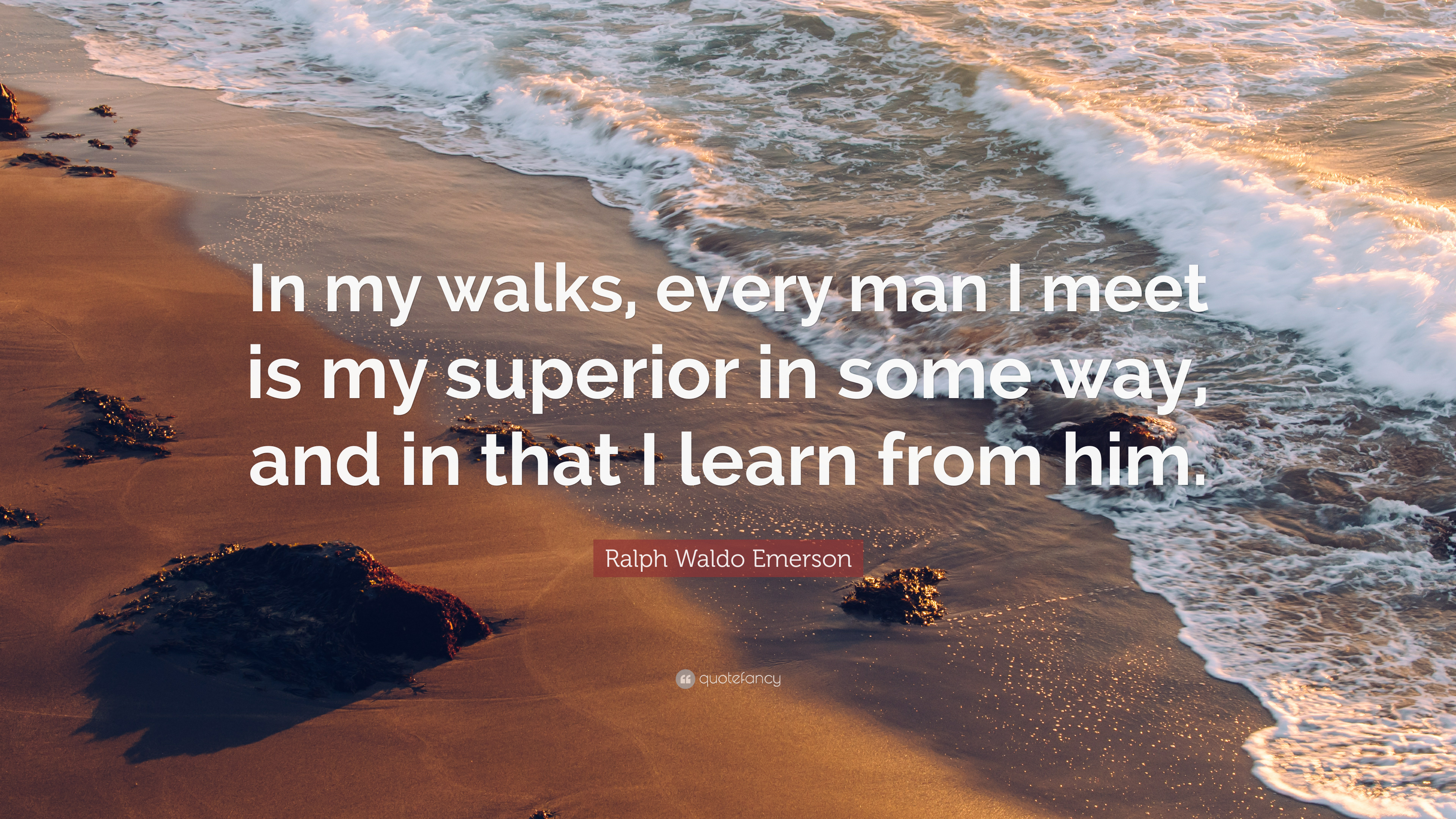 Ralph Waldo Emerson Quote In My Walks Every Man I Meet