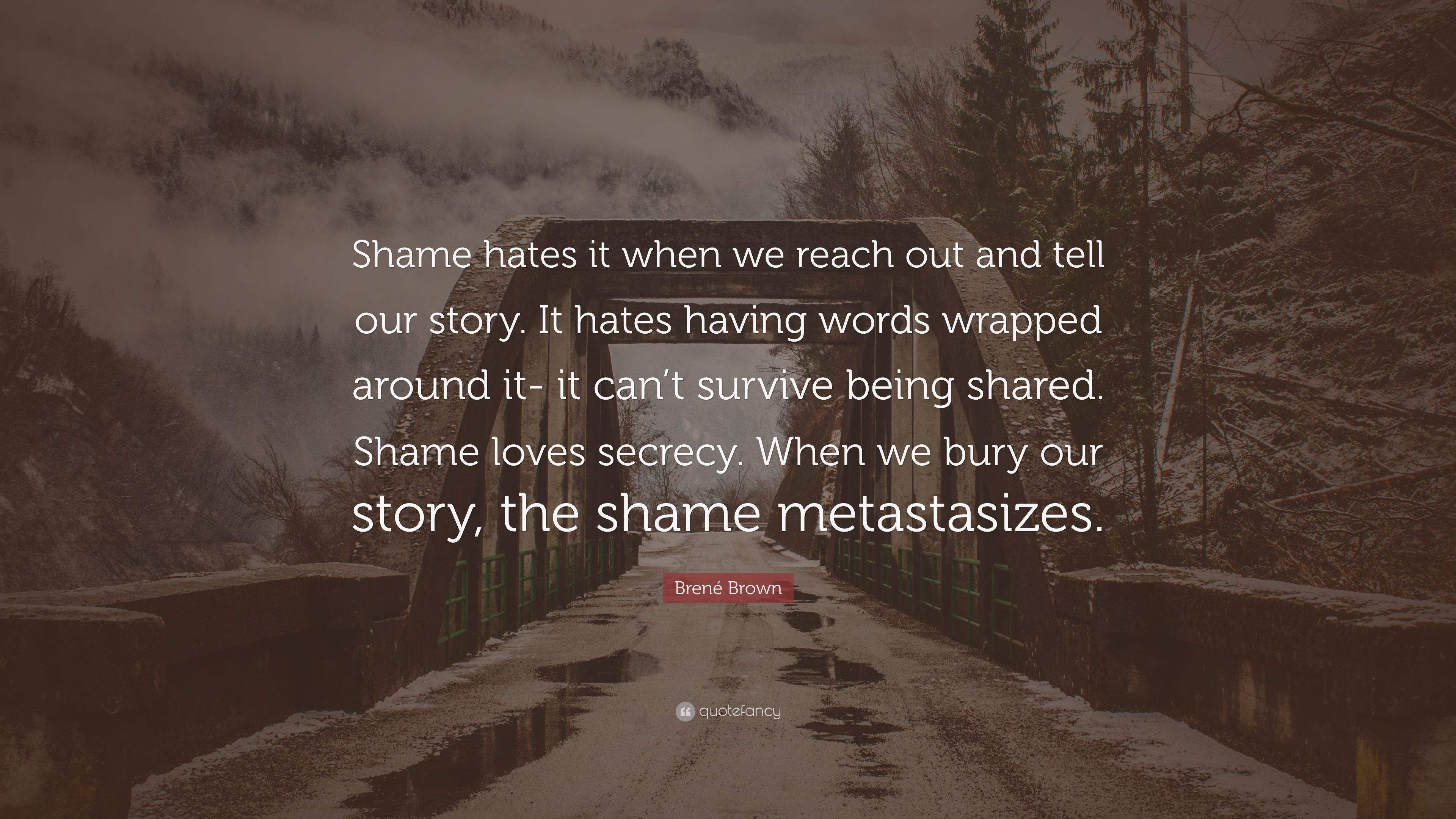 Brene Brown Quote Shame Hates It When We Reach Out And