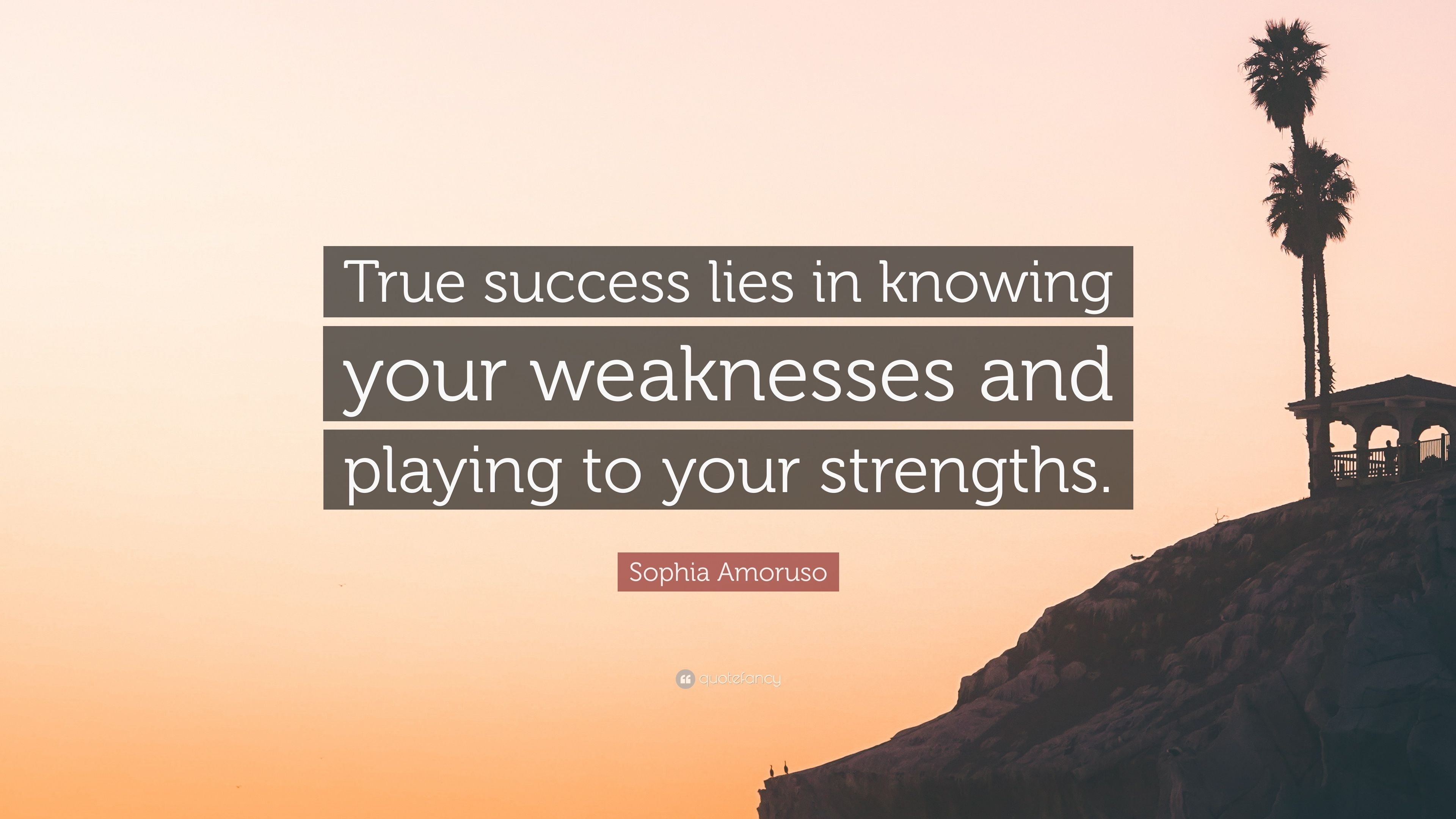 Sophia Amoruso Quote True Success Lies In Knowing Your