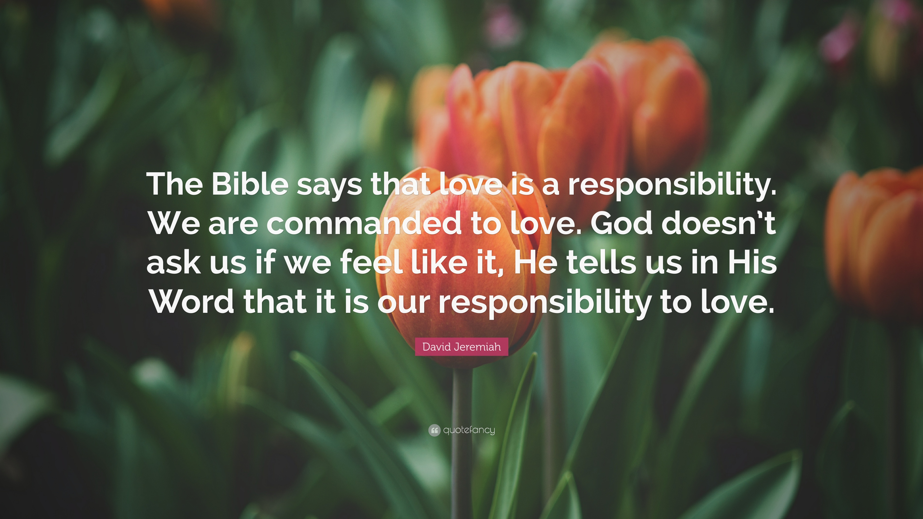 Inspirational Quotes On Life Challenges Wallpapers David Jeremiah Quote The Bible Says That Love Is A