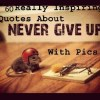 55 Most Inspirational Quotes About Never Give Up With Pictures