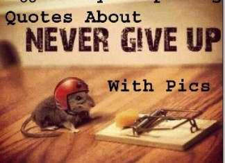 Never give up quotes images best pics