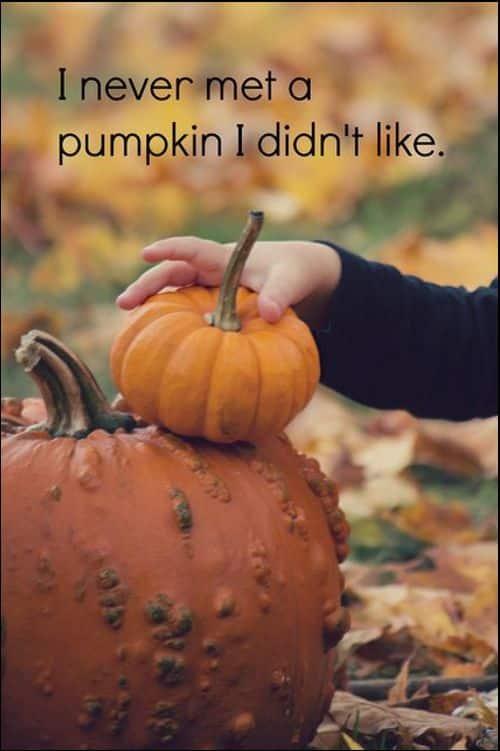 halloween pumpkin quotes