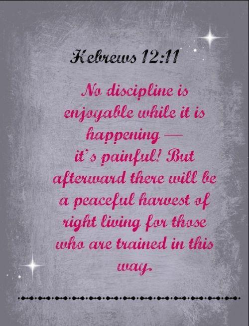 famous quotes on discipline