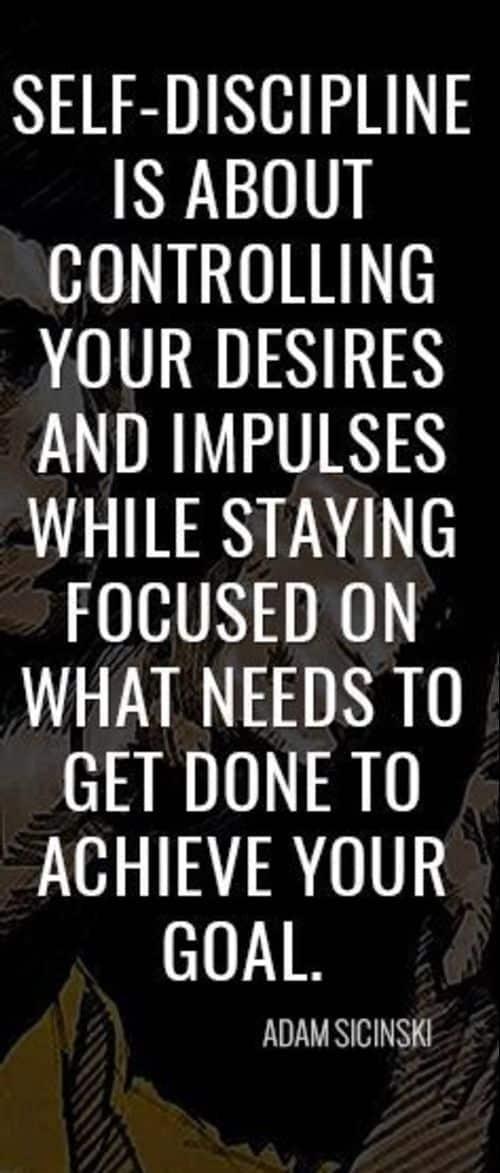 discipline quotes bible
