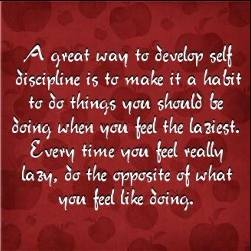 quotes discipline