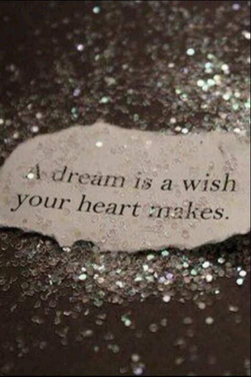 dream entrepreneur quotes