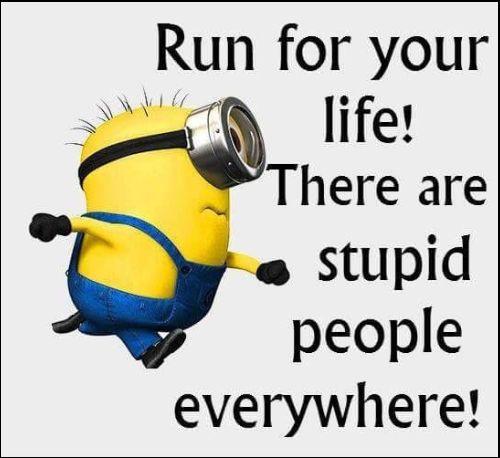 minion inspirational quotes
