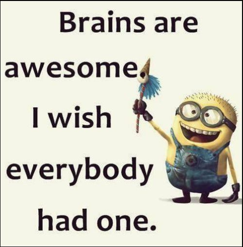 minion quotes images