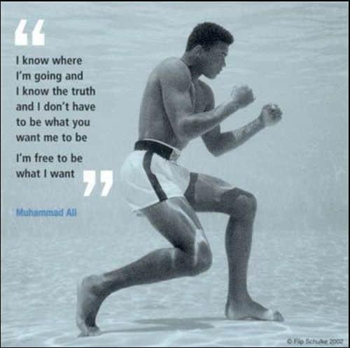ali muhammad quotes